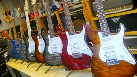 electric-guitars-and-parts