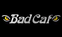 Bad Cat Amplifiers